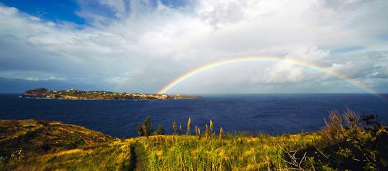 L'isola sbarca sul web